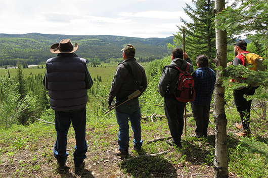 AWN consultation team looking over ridge